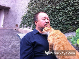 ai-weiwei-withhis40cats