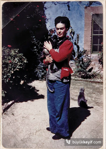 frida-kahlo-catandmonkey