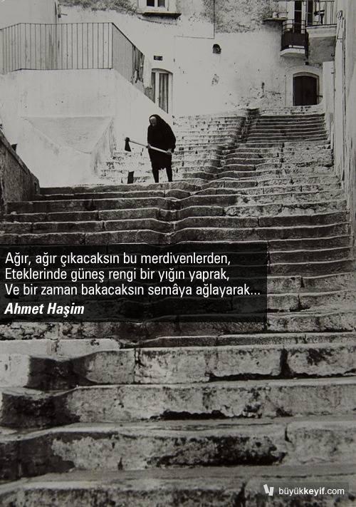 ahmetHasim