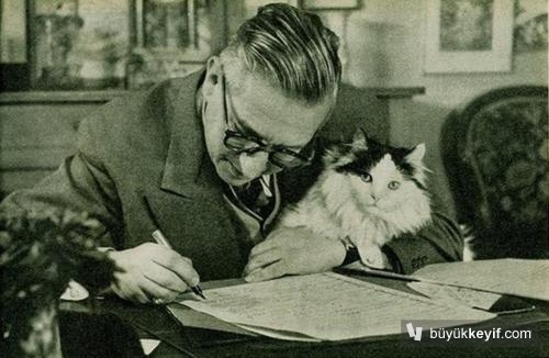 Jean Paul Sartre kedisiyle