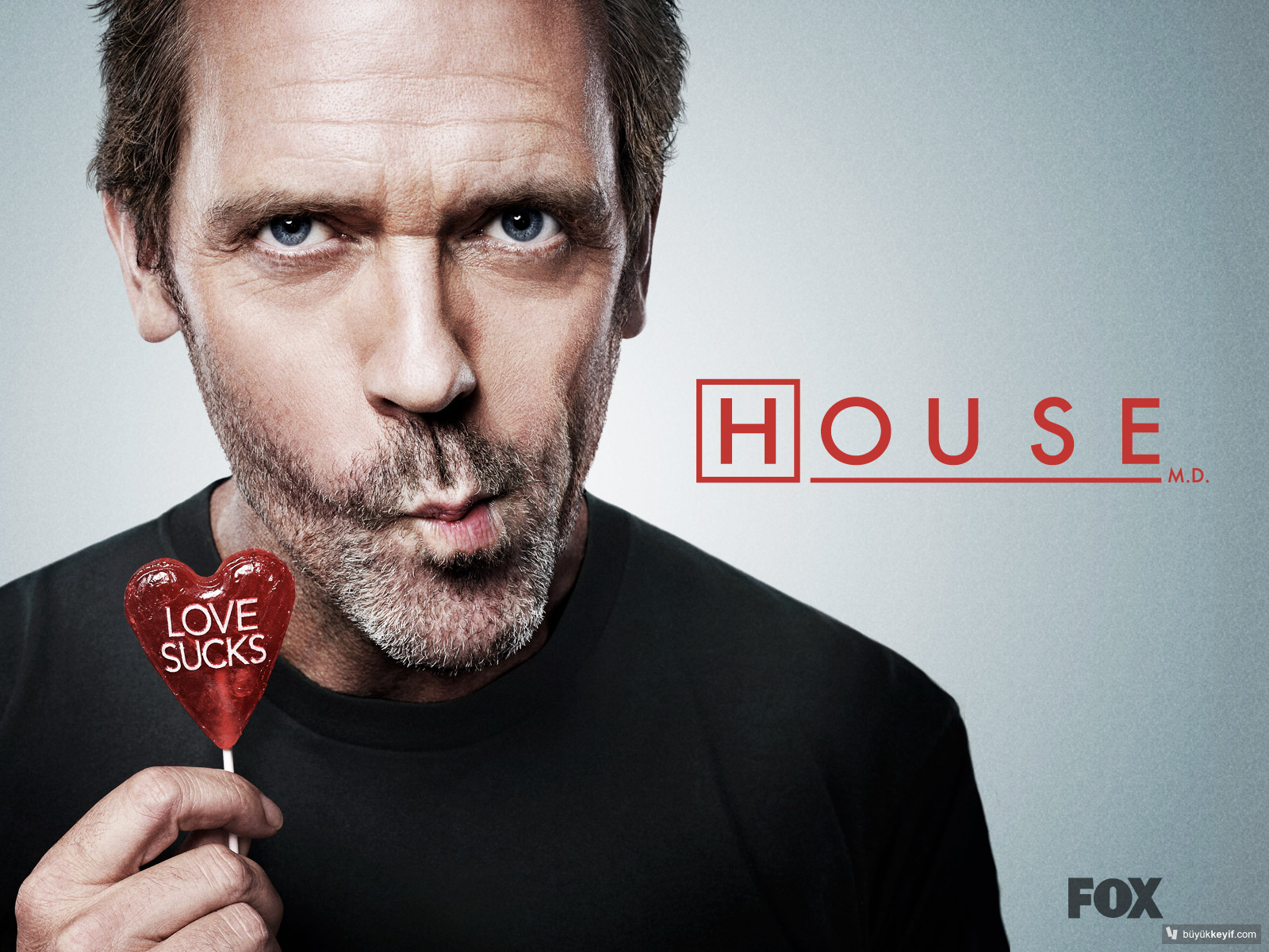 dr-house-love-sucks